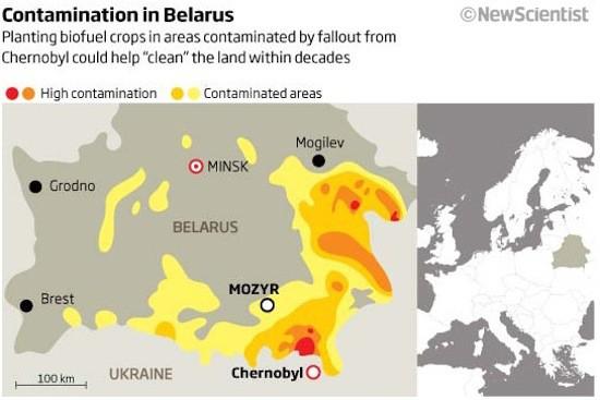123 факта о Беларуси глазами россиянина 7a5c47fe0593bd4db3fce8daf8b24d58