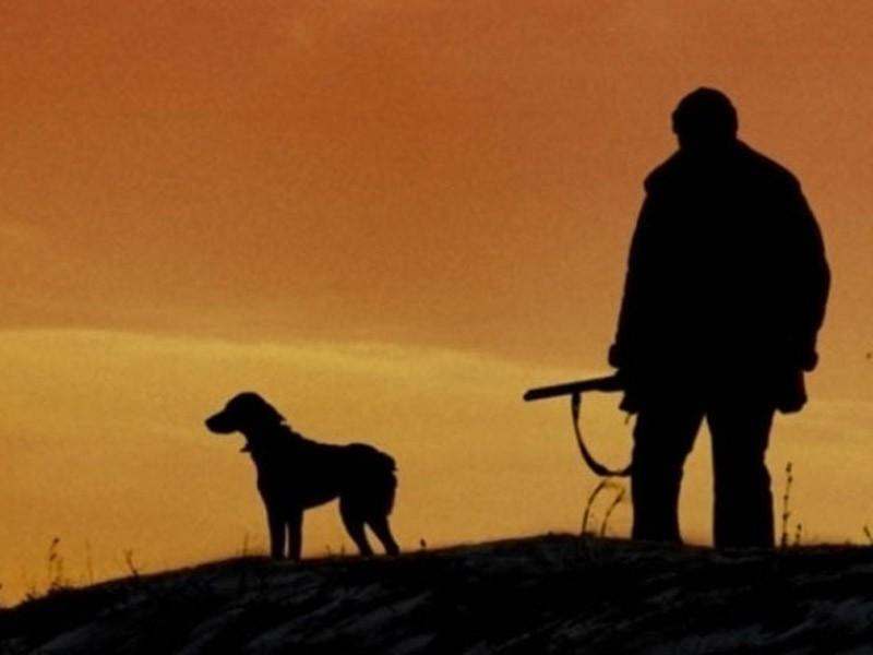 Очень красивый стих про любовь волка и волчицы 6_3
