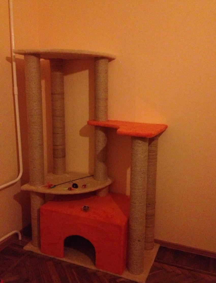 Самодельный домик для кота A238c6e5305841e878825619d7302acf