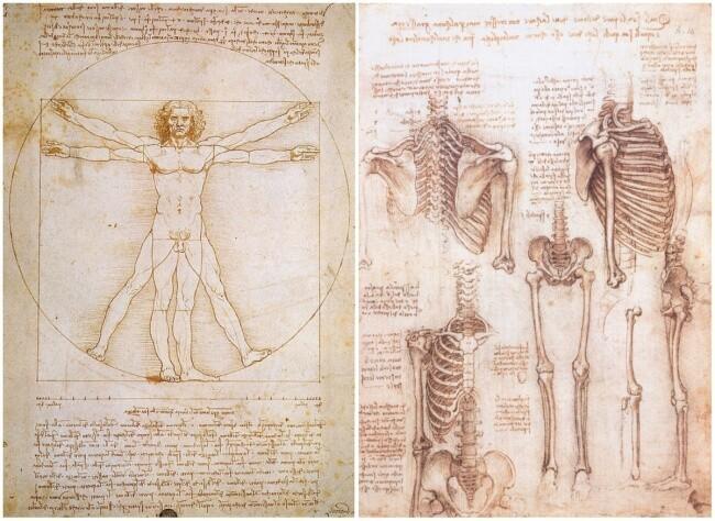 Гениальные изобретения и загадки Леонардо да Винчи 442646c1d2ae3178c4a298de890af1f3