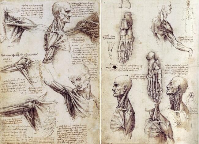 Гениальные изобретения и загадки Леонардо да Винчи Bc8f1d039932ddae6c8e0553321d3df9