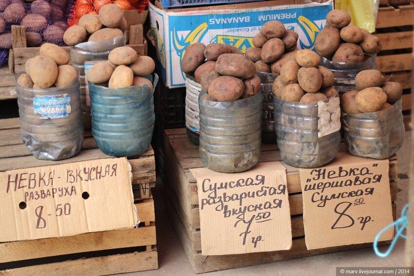 Сколько стоят продукты в Европе 3_19