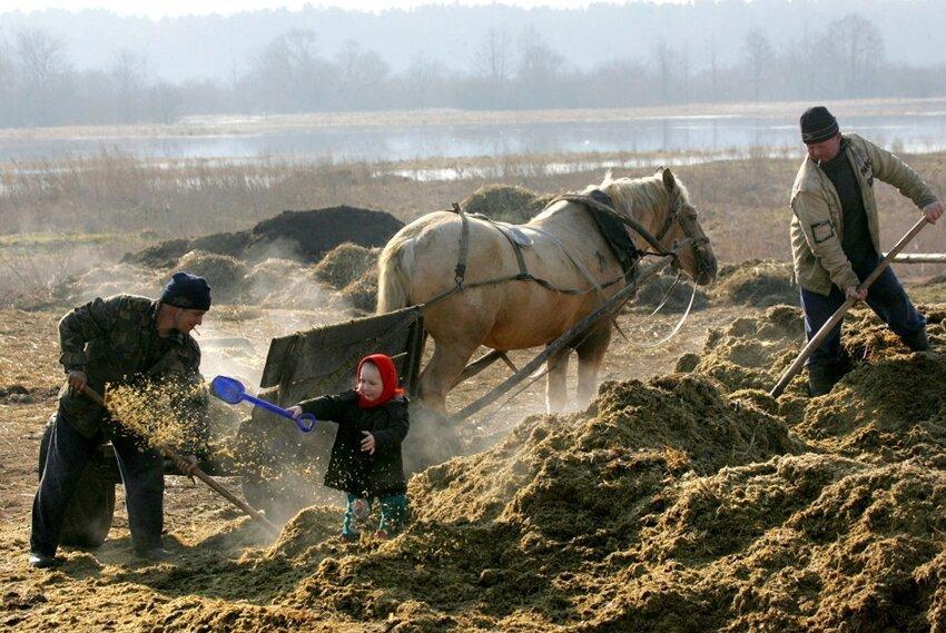 Жизненные фотографии белорусских деревень 1663534ddb24675228bc5e1f053e379a