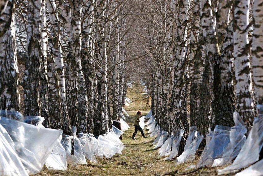 Жизненные фотографии белорусских деревень F0a2cbe7a8df8d7052b096d4cec53a7a