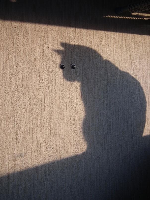 От улыбки стало вдруг светлее.. Funny-shadow-fails-illusions-2