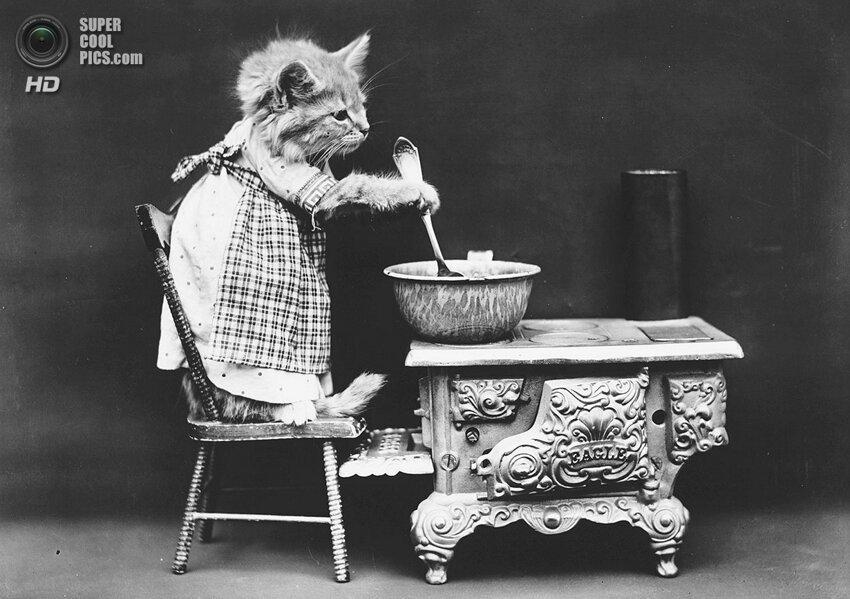 Животные Гарри Уиттера Фриса. «Фотошоп» столетней давности Supercoolpics_06_16052014112224