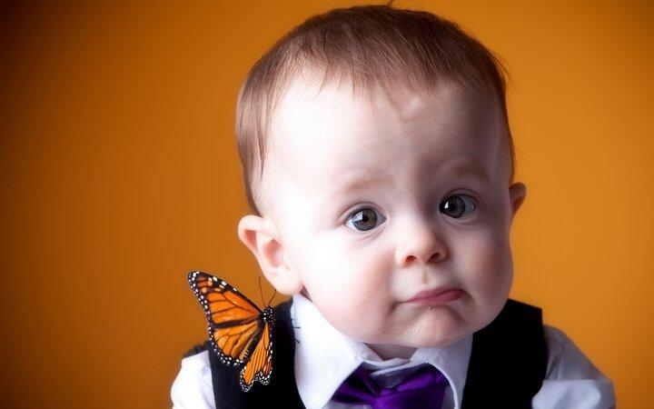 Устами младенца… 8d596b621c57a43a99ea5abdffaad812