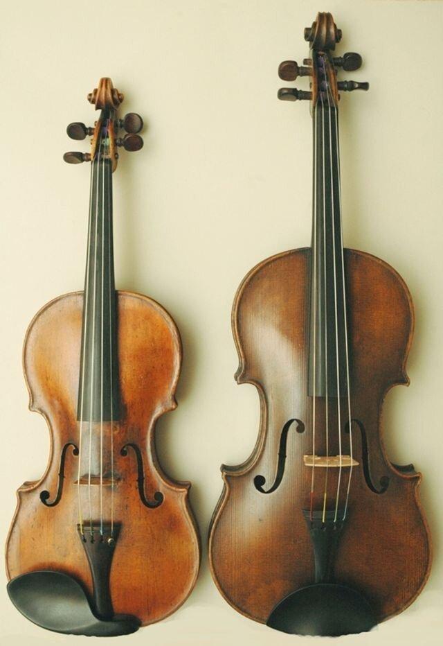 Не путайте музыкальные инструменты! 1_skripka---alt