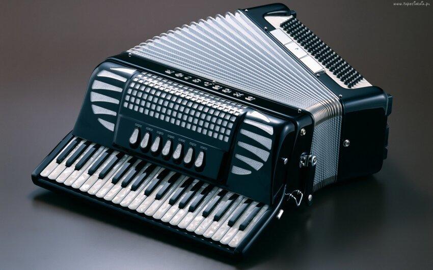 Не путайте музыкальные инструменты! Akkordeon3