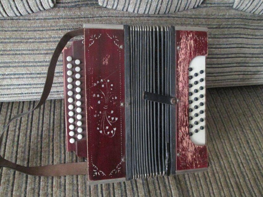 Не путайте музыкальные инструменты! Moja-garmon