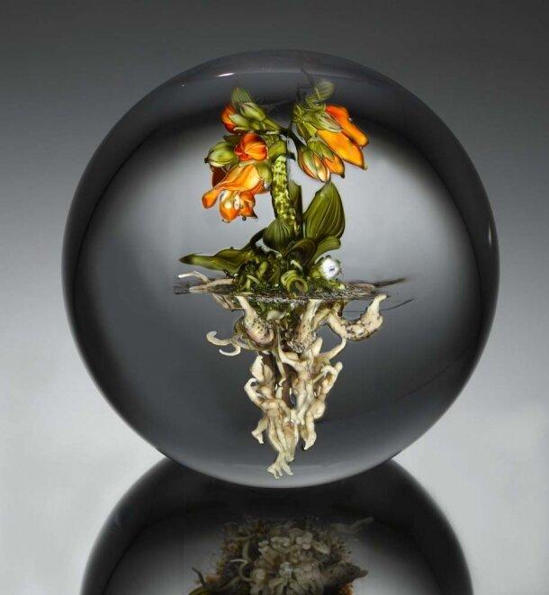 Кусочки природы в стекле 3471114
