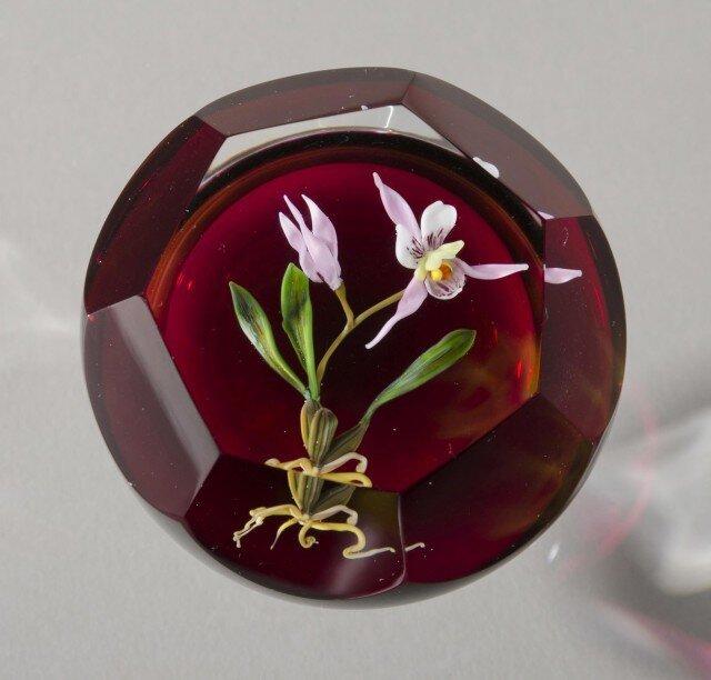 Кусочки природы в стекле 3471144
