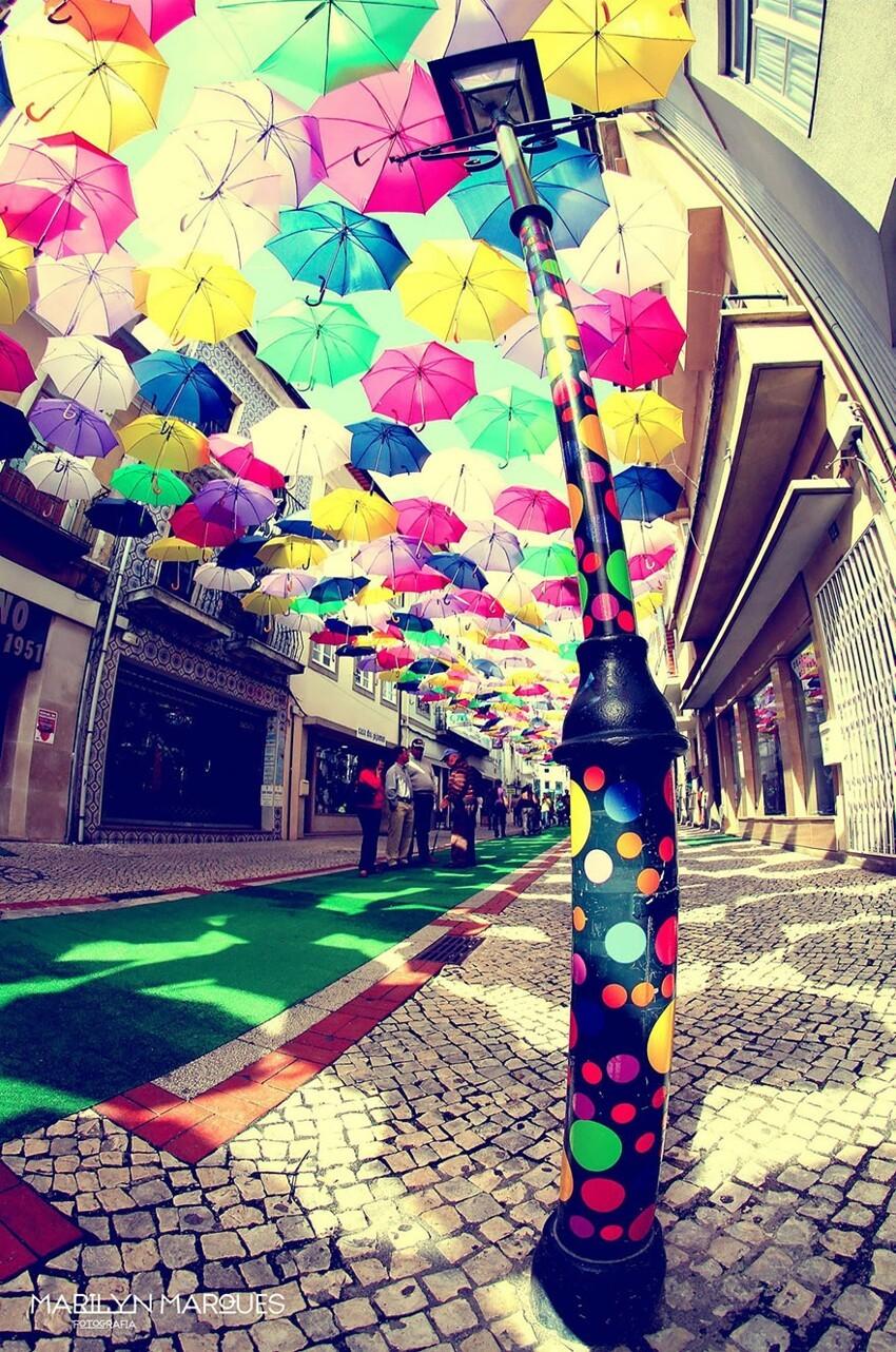 Сотни разноцветных зонтов над улицами Португалии  931d8a5318f31298ee8b51ec5604b4f2