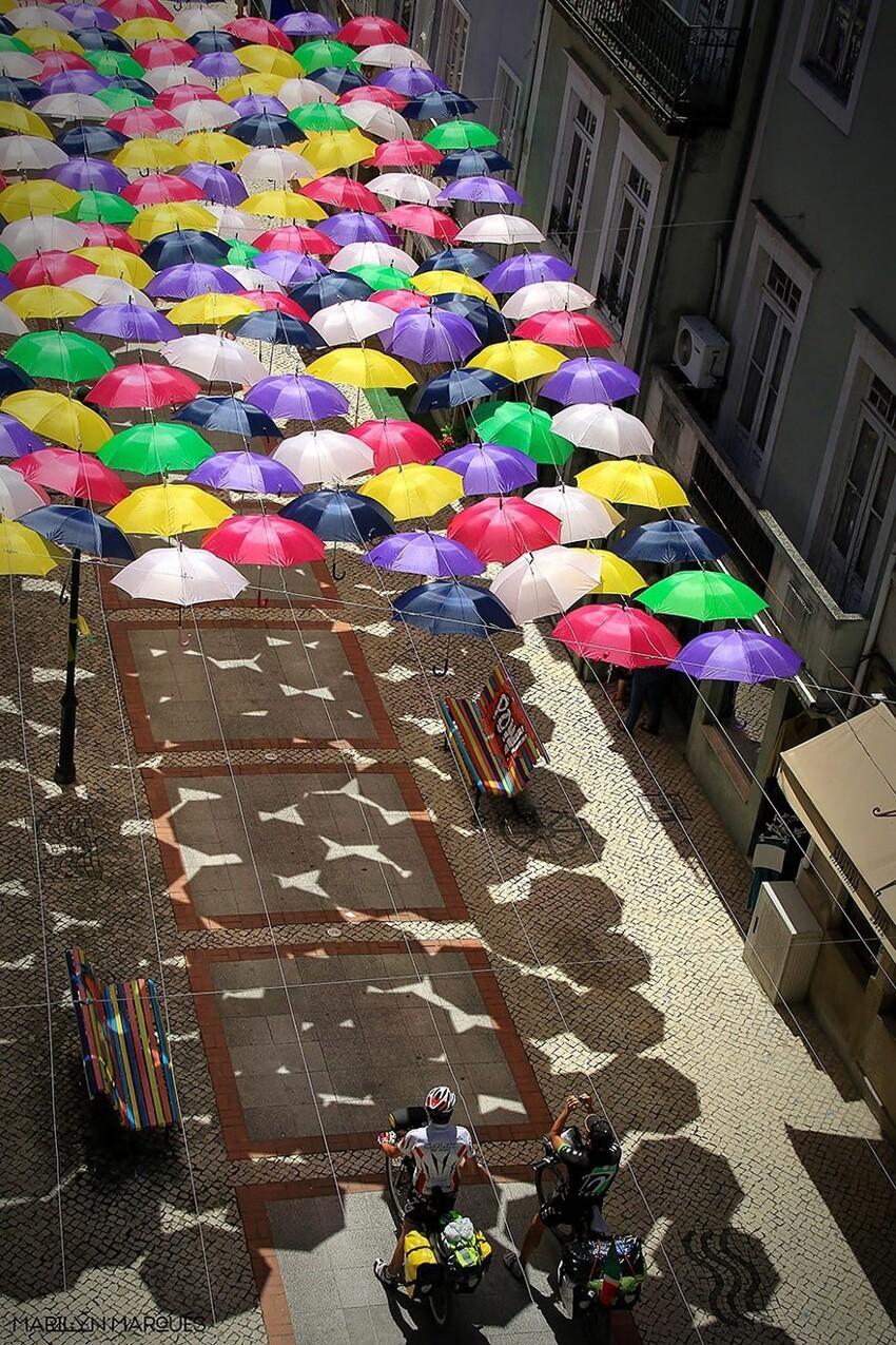 Сотни разноцветных зонтов над улицами Португалии  B650975b5e7dbc8ae0722ea99c3f7ccb