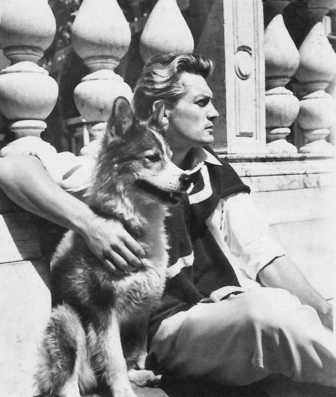 Его любили женщины, а он любил собак  050c91ffe305fcfae80198fb78269d5a
