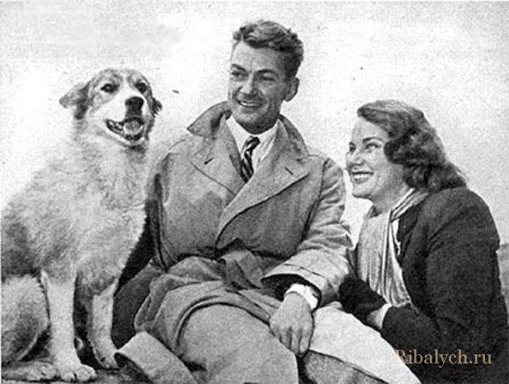 Его любили женщины, а он любил собак  1_023