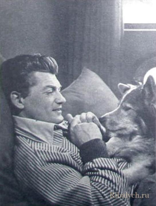 Его любили женщины, а он любил собак  1_025