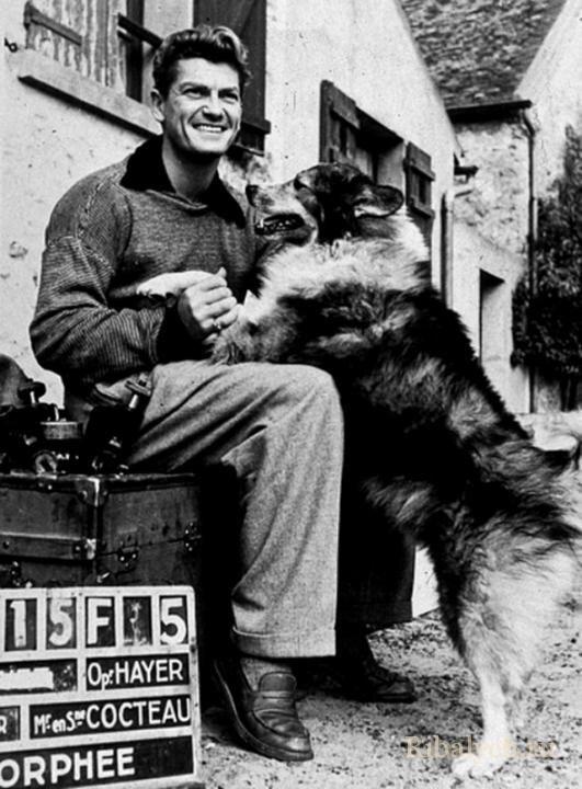 Его любили женщины, а он любил собак  4_014