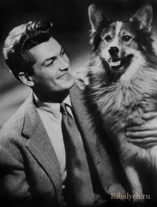 Его любили женщины, а он любил собак  6_012