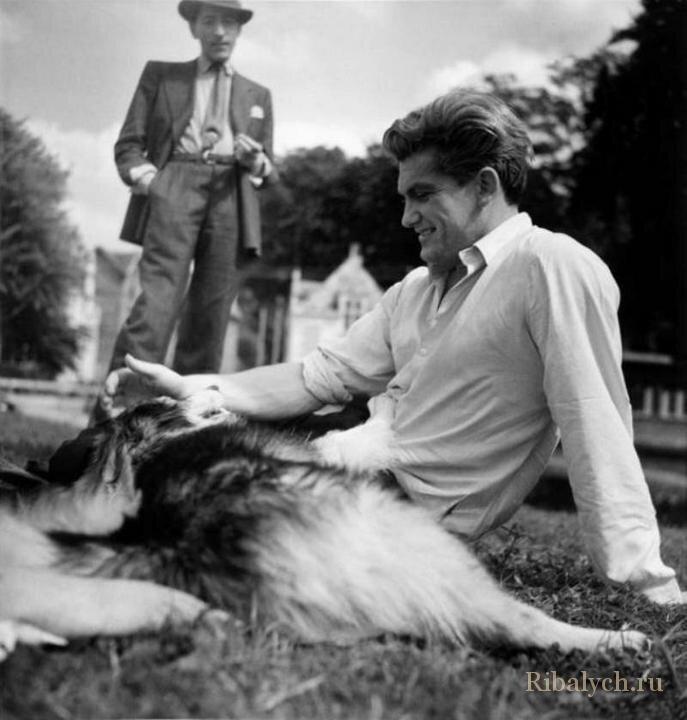 Его любили женщины, а он любил собак  8_004