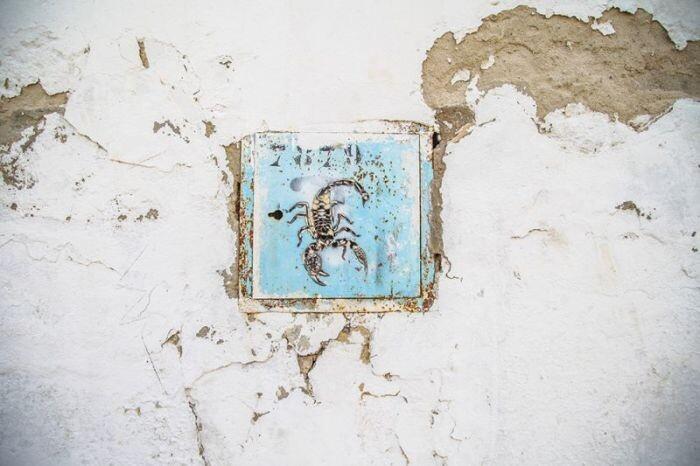 Расцвет уличного искусства в Тунисе A9e860f8825316b3142b2edeb9f31434