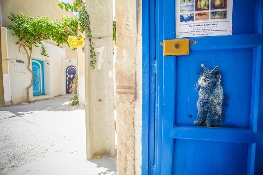 Расцвет уличного искусства в Тунисе Dab66b657add6e15d4485ff212e0ba3f