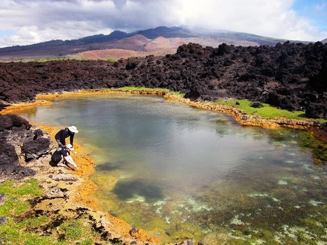 30 лучших фотографий природы, сделанных исследователями 3a9aaccc138064e593c75857b441db70
