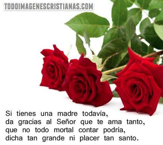 FELIZ DIA DE LA MADRE!!!!! Imagenes-cristianas-para-madres