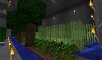 Ferme souterraine. 27dc8384-d5f0-46b8-a88e-8acb5628569c