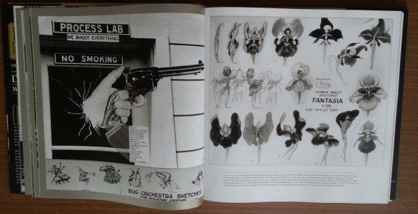 Les livres Disney - Page 5 8b133acb-5bb4-46a7-b1cf-ca68f46587b2