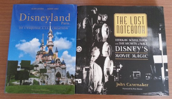 Les livres Disney - Page 5 Ccde34ee-ae67-4312-bf0a-a1f57cfd73ab