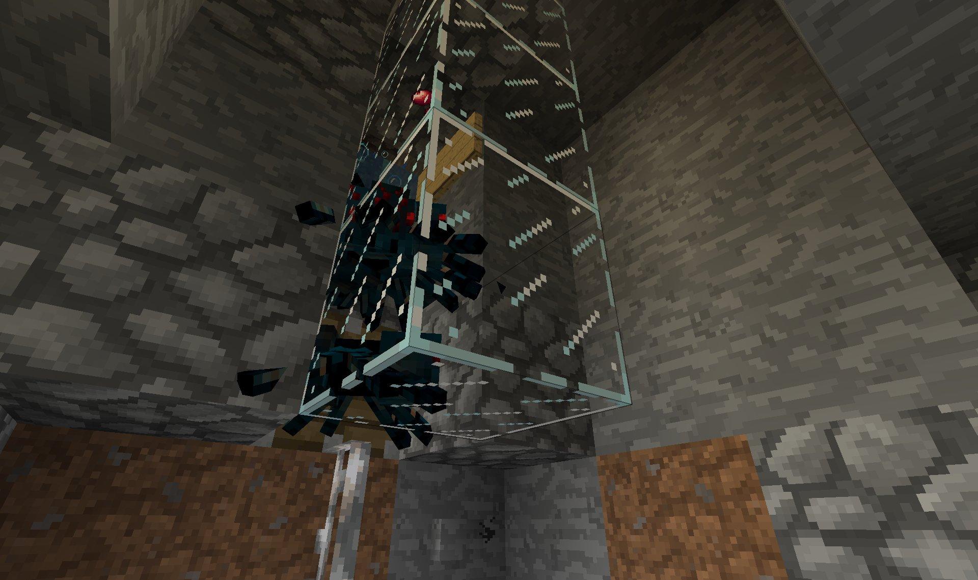 Ferme à araignées des caves 3889f3e6-aef1-4d21-9602-93b4d57d24ec