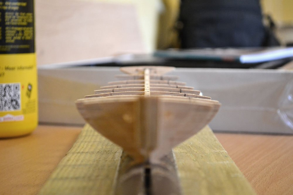 L'Albatros 1:50 de Constructo  - Page 2 68093f2a-5715-4802-98de-1b1304420f6f