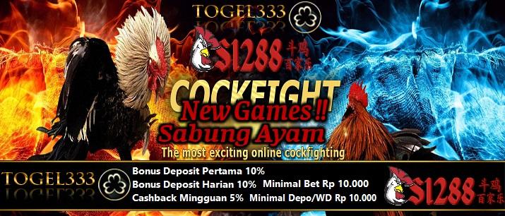 TOGEL333, SUPER HOT PROMO! BONUS DEPOSIT HARIAN , LENGKAP PRIZE 1,2,DAN 3 SabungAyam