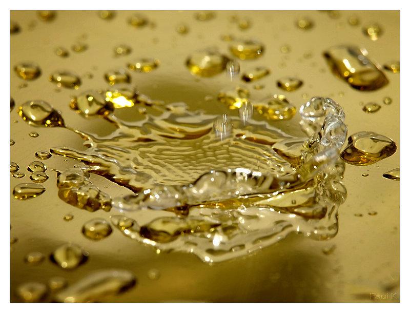 Vos plus belles photos du mois de novembre 2009 Image28