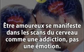 Le forum (compilation de citations) Citation_amour__Etre_amoureux_se_manifeste_dans_les_scans_du_cerveau_comme_une_addiction_pas_une_e_0824-290x180