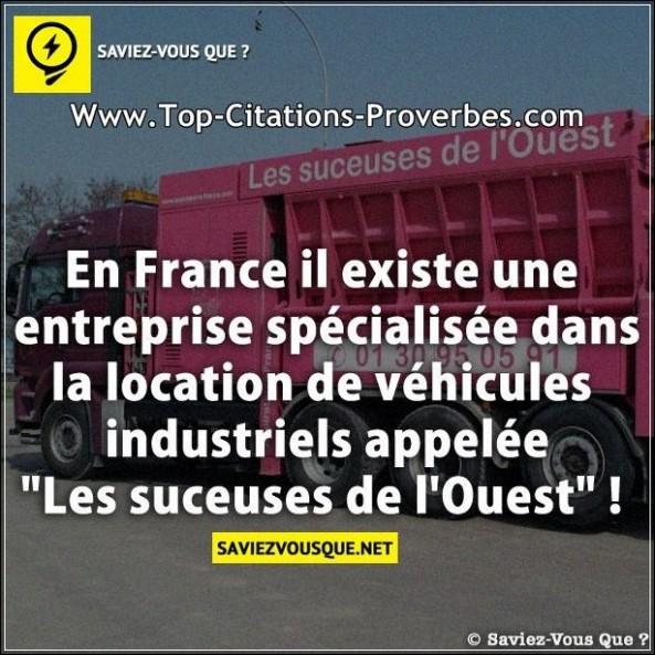 Vox Populi - Page 12 Citation_en_image__En_France_il_existe_une_entreprise_specialisee_dans_la_location_de_vehicules_ind_03307-593x593