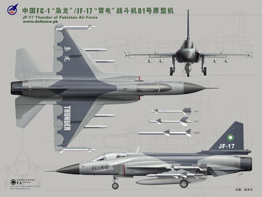 مصر تتعاقد على 54 طائرة تدريب جديدة باكستانية  - صفحة 2 1302718865_jf-17-thunder1