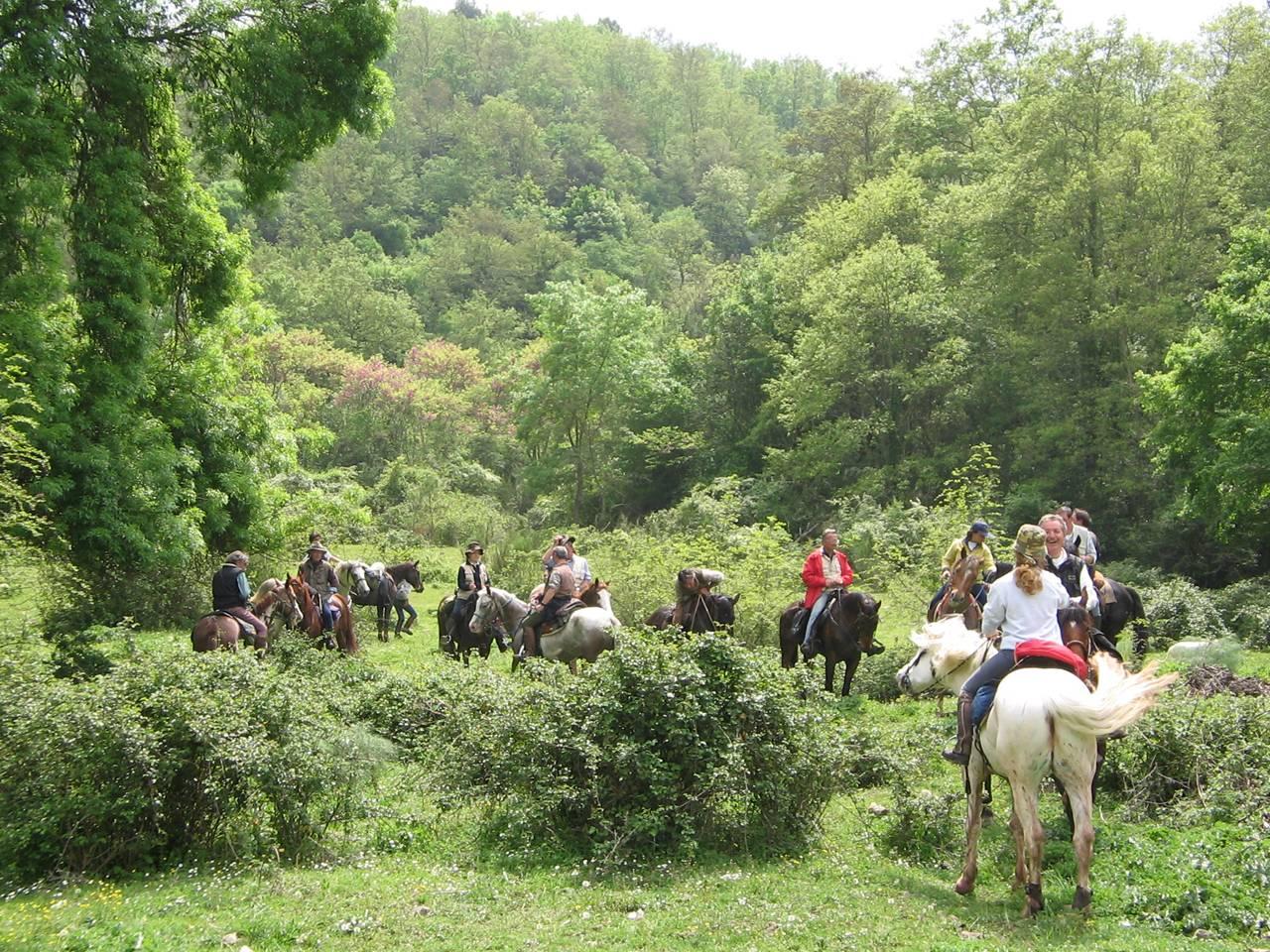 Passione MTB e ciclismo - Pagina 14 Trekking-a-cavallo