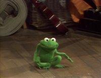 بإنفراد تام تحميل جميع مواسم مسرح العرائس المابيت شو الخمسة كاملة / The Muppet Show Full season 1- 5 BernadettePeters-750555