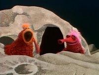 بإنفراد تام تحميل جميع مواسم مسرح العرائس المابيت شو الخمسة كاملة / The Muppet Show Full season 1- 5 FlorenceHenderson2-719268