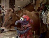بإنفراد تام تحميل جميع مواسم مسرح العرائس المابيت شو الخمسة كاملة / The Muppet Show Full season 1- 5 JulieAndrews-720573