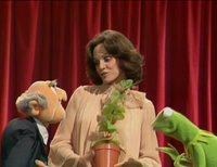 بإنفراد تام تحميل جميع مواسم مسرح العرائس المابيت شو الخمسة كاملة / The Muppet Show Full season 1- 5 ValerieHarper-745450