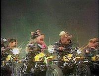 بإنفراد تام تحميل جميع مواسم مسرح العرائس المابيت شو الخمسة كاملة / The Muppet Show Full season 1- 5 Annemurray-742636