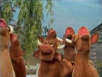 بإنفراد تام تحميل جميع مواسم مسرح العرائس المابيت شو الخمسة كاملة / The Muppet Show Full season 1- 5 Arloguthrie-732248