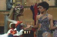 بإنفراد تام تحميل جميع مواسم مسرح العرائس المابيت شو الخمسة كاملة / The Muppet Show Full season 1- 5 Lolafalana-719918