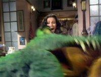 بإنفراد تام تحميل جميع مواسم مسرح العرائس المابيت شو الخمسة كاملة / The Muppet Show Full season 1- 5 Lyndacarter-774128