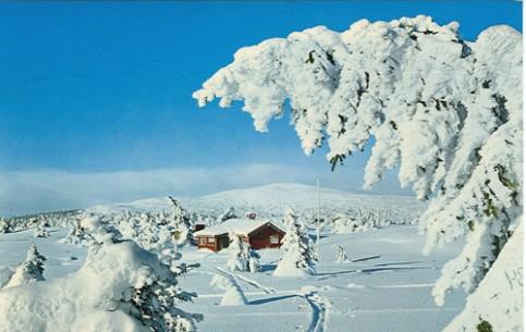 Роскошные пейзажи Норвегии - Страница 7 Photo-oslo-1