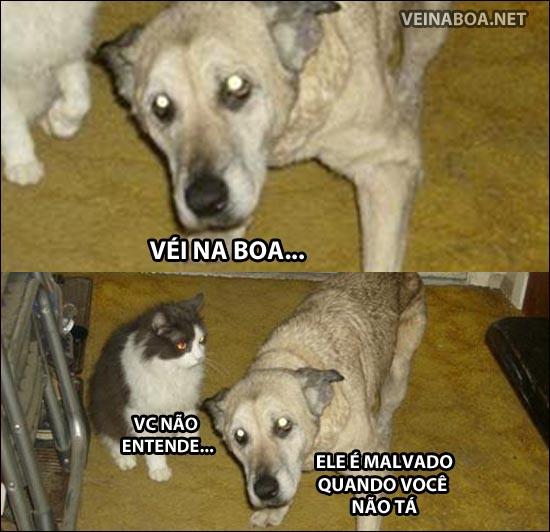 Tirinhas memes - Página 36 376363_329355297158813_542173407_n