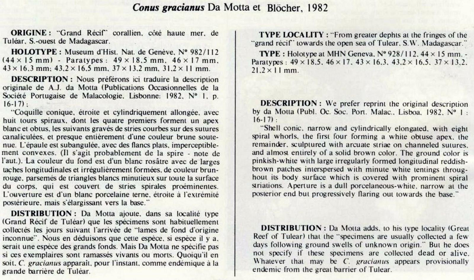 Conus (Darioconus) aulicus f. gracianus (da Motta, 1982) Conus%20gracianus_html_m3652e71d